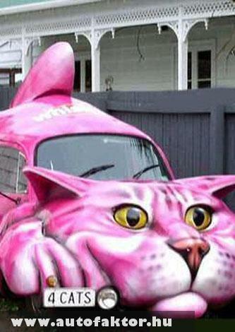 Macskajárgány :)