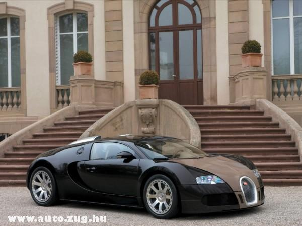 Bugatti veyron FBG 48