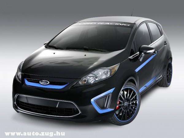 Ford Fiesta (sport) 2010